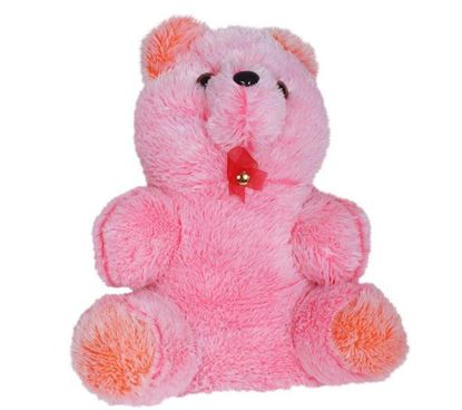 Picture of Teddy Bear Panda (Medium Size)