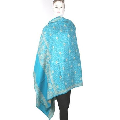 Picture of Kashmiri Shawls For Women-Sky